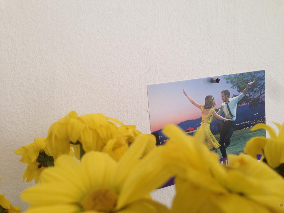 Blumen La la Land